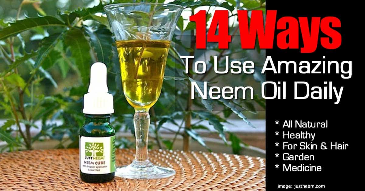 Neem oil for scalp psoriasis can be effective if you apply it over hair 3