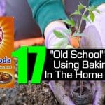 17 Smart Baking Soda Tips For The Garden & The Kitchen