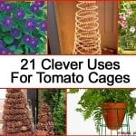 "21 Clever ""Other"" Uses For Tomato Cages"
