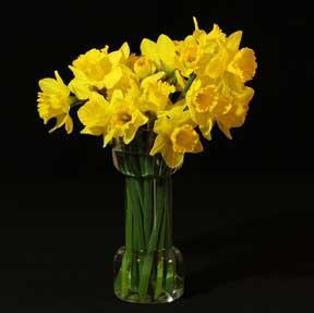 flower-vase-043014