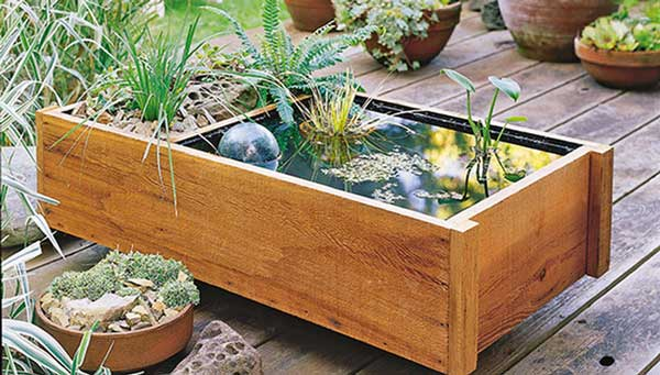 deck-top-pond-lowes