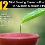 12 Mind Blowing Reasons Aloe Vera Is A Miracle Medicine Plant