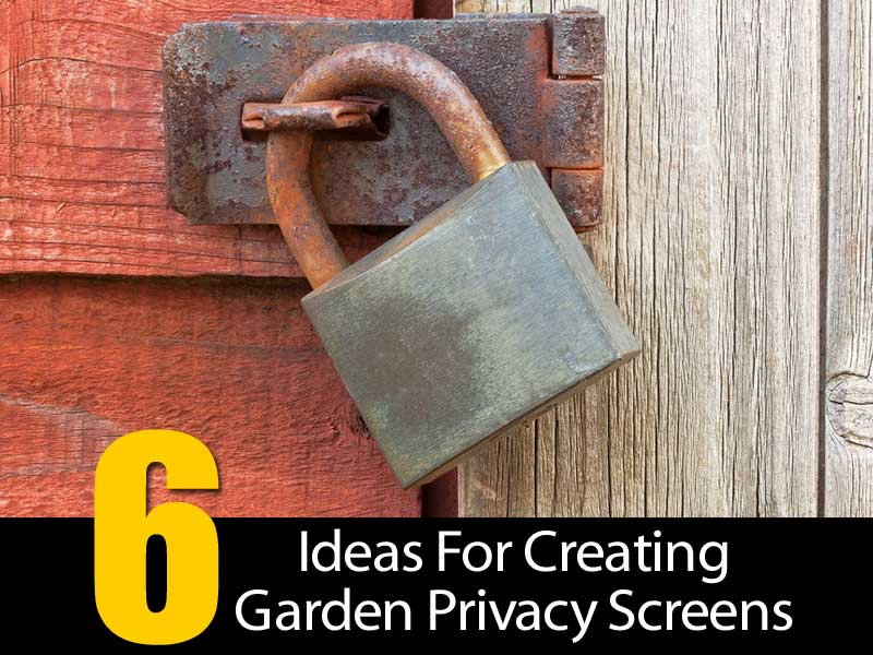 garden-privacy-screens-083114