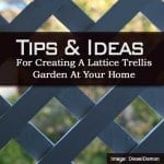 lattice-trellis-090613