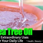 Tea Tree Oil – 14 Extraordinary Uses For Your Daily Life