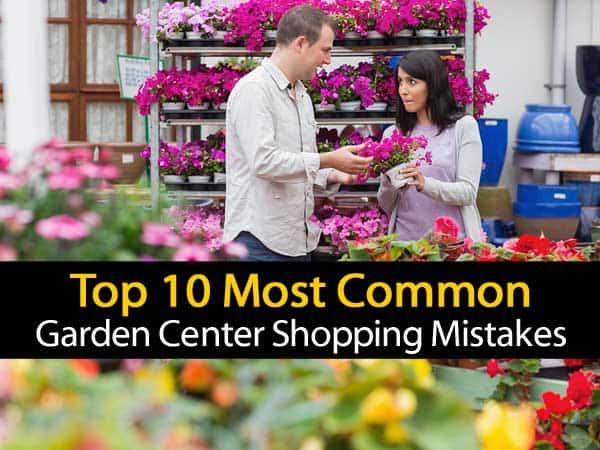 common-garden-center-mistakes-053114