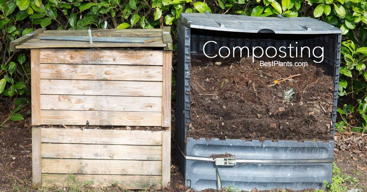 7 Tips For Making And Using Compost In The Garden