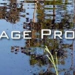 11 Drainage Problems On Small Landscapes