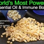 World's Most Powerful Essential Oil And Immune Booster