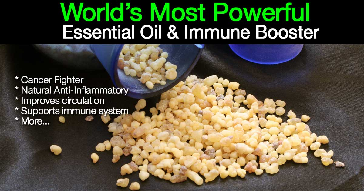 fmost-powerful-frankincense-world-05312015
