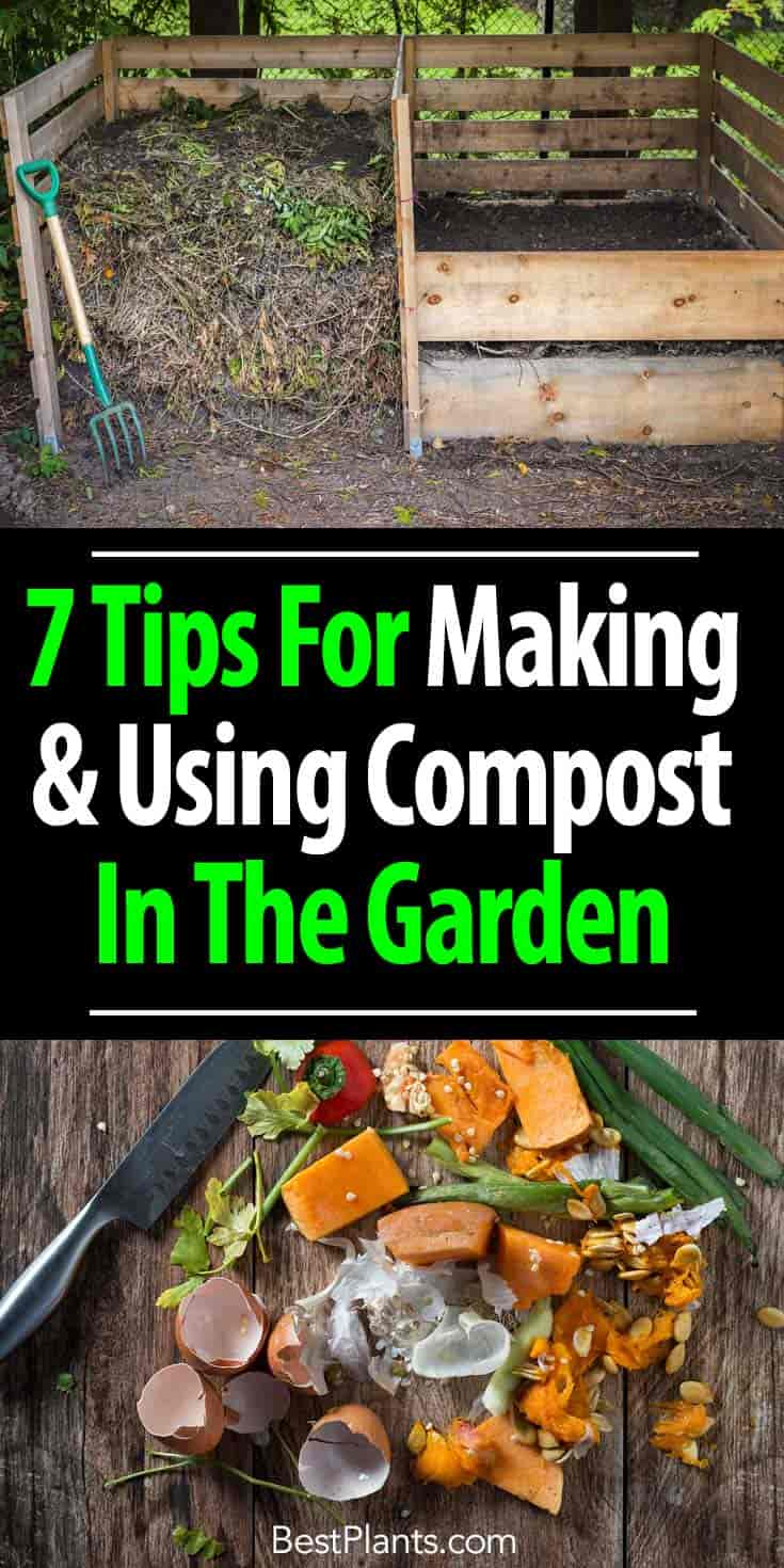 Compost Bin And Kitchen Composting Scraps